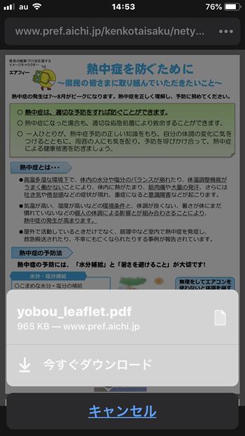 iOS版Firefox 17.3 No - 2:PDFをダウンロード