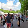 Photos: ネパールフェスティバル名古屋 2019 No - 3:沢山の人で賑わう会場