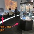 Photos: 名古屋市科学館に展示中の「小牧隕石」 - 19
