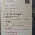 Photos: 名古屋市科学館「絶滅動物研究所」展 No - 50:ステラーカイギュウの説明