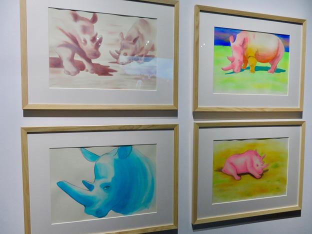 名古屋市科学館「絶滅動物研究所」展 No - 103:中川翔子さんが描いたわずか2頭となったキタシロサイ