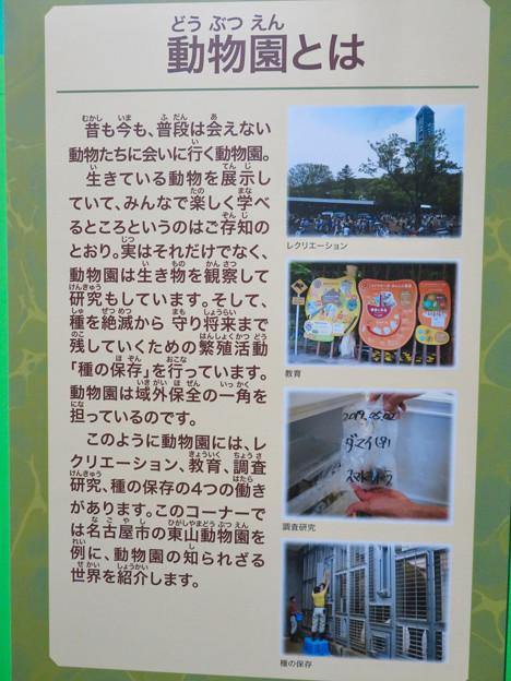 名古屋市科学館「絶滅動物研究所」展 No - 127:動物園の役割について
