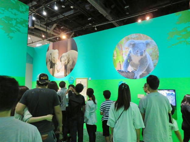 名古屋市科学館「絶滅動物研究所」展 No - 128:東山動植物園コーナー