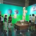 Photos: 名古屋市科学館「絶滅動物研究所」展 No - 141