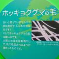 Photos: 名古屋市科学館「絶滅動物研究所」展 No - 152:ホッキョクグマの毛の説明(実は透明)