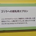 Photos: 名古屋市科学館「絶滅動物研究所」展 No - 157:ゴリラ授乳用エプロンの説明