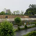 Photos: 桃花台線の桃花台中央公園南側撤去工事(2019年7月19日) - 1