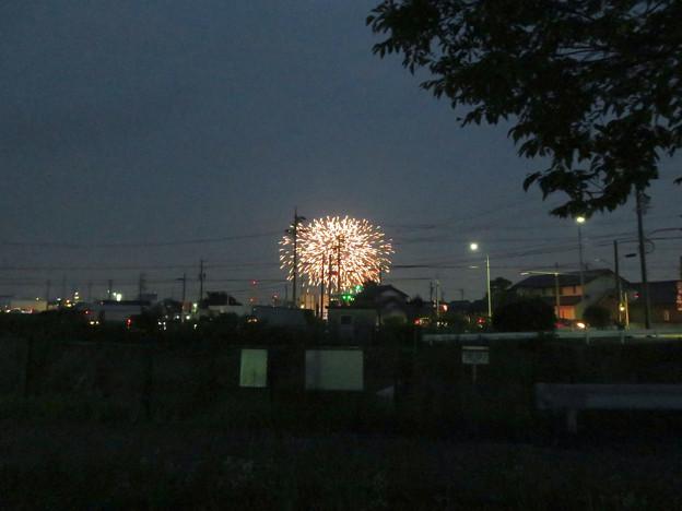 大池緑地公園から見た春日井市民納涼まつりの花火 - 1