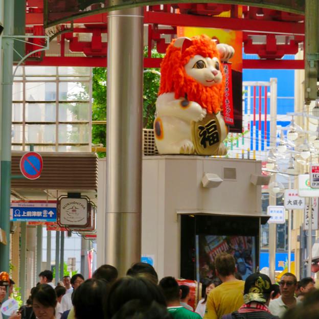大須商店街:映画「ライオンキング」PRのためライオンになってた招き猫広場の招き猫 - 2
