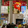 Photos: 大須商店街:映画「ライオンキング」PRのためライオンになってた招き猫広場の招き猫 - 2
