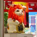 Photos: 大須商店街:映画「ライオンキング」PRのためライオンになってた招き猫広場の招き猫 - 3
