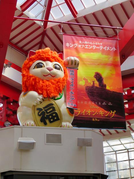 大須商店街:映画「ライオンキング」PRのためライオンになってた招き猫広場の招き猫 - 5