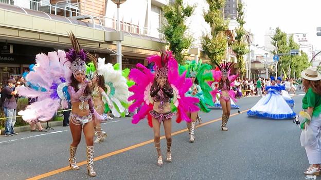 Photos: 大須夏まつり 2019:サンバパレード - 35