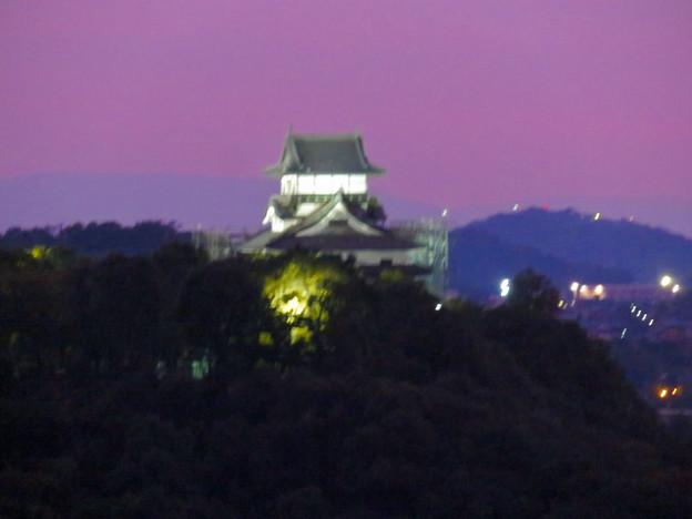 犬山成田山から見た夜景 - 3:夕暮れ時の犬山城