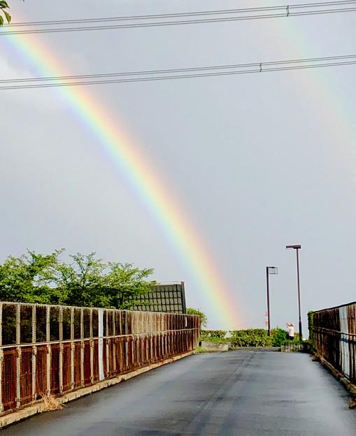 2重の虹が架かった、雨上がりの日(2019年8月14日) - 6