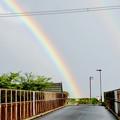 Photos: 2重の虹が架かった、雨上がりの日(2019年8月14日) - 6