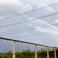 Photos: 2重の虹が架かった、雨上がりの日(2019年8月14日) - 8