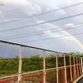 Photos: 2重の虹が架かった、雨上がりの日(2019年8月14日) - 9