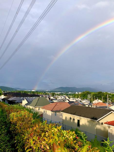 2重の虹が架かった、雨上がりの日(2019年8月14日) - 14