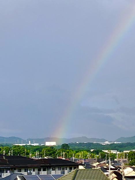 2重の虹が架かった、雨上がりの日(2019年8月14日) - 15