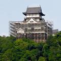天守保蔵工事中の犬山城(2019年8月18日) - 25