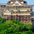 天守保蔵工事中の犬山城(2019年8月18日) - 35