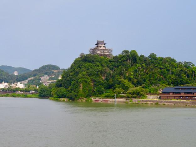 天守保蔵工事中の犬山城(2019年8月18日) - 28