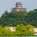 天守保蔵工事中の犬山城(2019年8月18日) - 31:ライン大橋の建物と工事中の犬山城