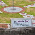 Photos: 上から見た犬山駅前ロータリー中央の花壇 - 2