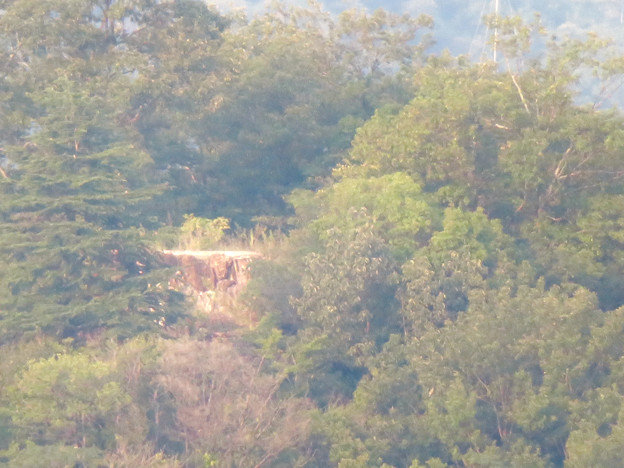 ライン大橋の上から見た鵜沼城跡の岩山 - 3:頂上部の平たくなってる部分?とアンテナ