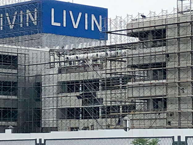 建物全体が足場で覆われた解体工事中のザ・モール春日井(2019年8月19日) - 6