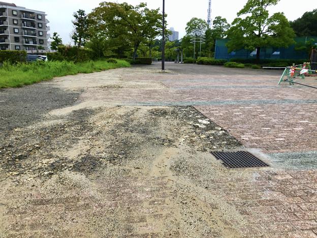 桃花台線の桃花台中央公園撤去工事(2019年8月23日):工事部分のフェンスが大部分撤去 - 4:飛び出す邪魔な植え込みも復元