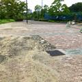 Photos: 桃花台線の桃花台中央公園撤去工事(2019年8月23日):工事部分のフェンスが大部分撤去 - 5:飛び出す邪魔な植え込みも復元
