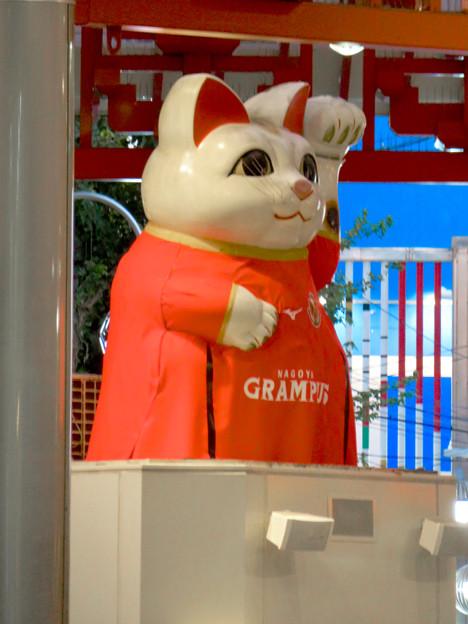 グランパスのユニフォームを着てた招き猫広場の招き猫 - 2