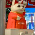 Photos: グランパスのユニフォームを着てた招き猫広場の招き猫 - 2