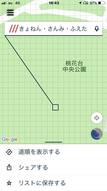 What3Words 4.1 No - 19:桃花台中央公園のある地点