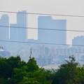 Photos: イオン守山店の屋上から見た景色 - 10:名駅ビル群