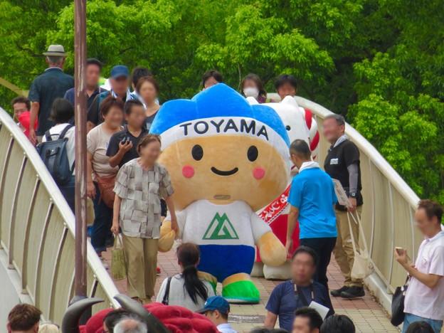 ふるさと全国県人会まつり 2019 No - 23:富山県のゆるキャラ「きときと君」