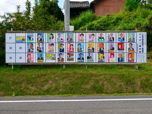 小牧市議会議員選挙 2019のポスター - 1