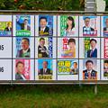 Photos: 小牧市議会議員選挙 2019のポスター - 4