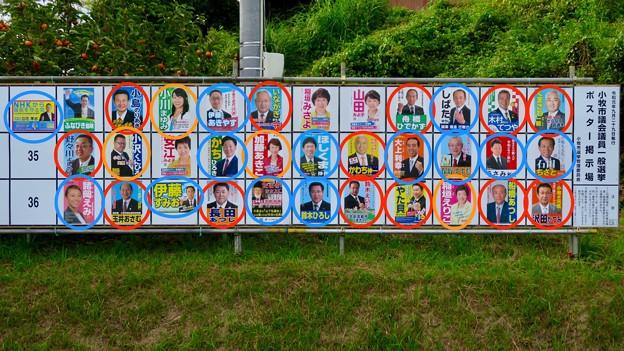 Photos: 小牧市議会議員選挙 2019のポスター - 6:市長と癒着して市議役割放棄してる議員(赤・オレンジ)と新人議員(青色)