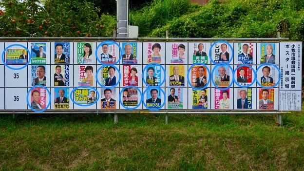 小牧市議会議員選挙 2019のポスター - 7:新人議員