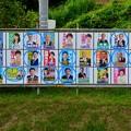 Photos: 小牧市議会議員選挙 2019のポスター - 7:新人議員