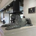 シルクハットをかぶっていた名古屋三越栄店のライオン像 - 3