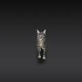 Photos: Google検索結果から3Dオブジェクトの猫などの動物がAR表示可能に! - 4