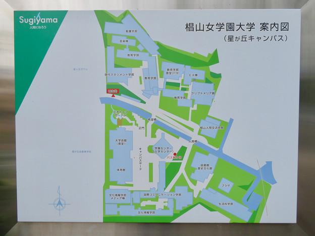椙山女学園大学 星が丘キャンパス No - 3:星が丘キャンパス案内図