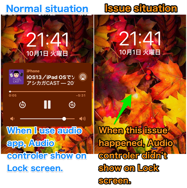 iOS Audio app issue : Volume buttons Bluetooth headphone dosen't work, and so on. No - 1