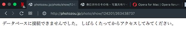 フォト蔵の不具合(2019年10月9日):「データベースに接続できない」としてページ見られず