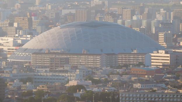 東山スカイタワーから見た景色(2019年10月)No - 4:絵にになるナゴヤドーム