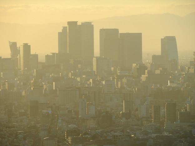 東山スカイタワーから見た景色(2019年10月)No - 6:黄色く染まる名駅ビル群